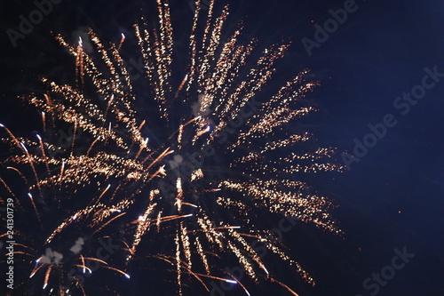 Fireworks - Rio de Janeiro Canvas Print