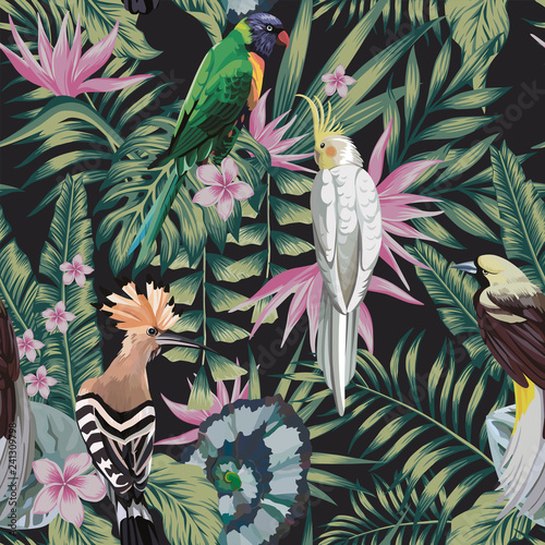 Tropical birds plants leaves flowers abstract color black background