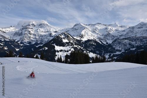 Faire de la luge dans l'Oberland bernois, Suisse
