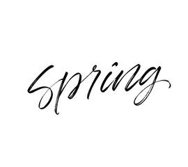 Spring phrase. Vectorillustration of handwritten lettering.
