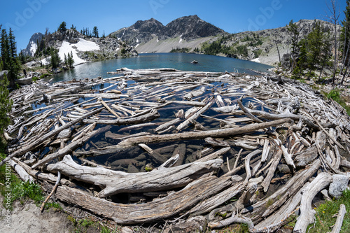 Fotografie, Obraz  Fisheye view of Sawtooth Lake in Idaho with lots of logs and driftwood in foregr