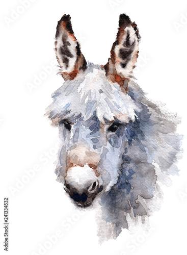 Slika na platnu Cute Donkey Watercolor Animal hand painted illustration isolated on white backgr