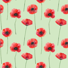 FototapetaSeamless pattern with poppies on green, hand drawn illustration