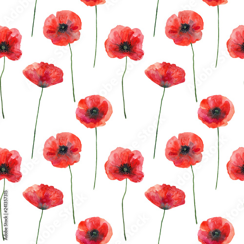 fototapeta na ścianę Seamless pattern with poppies, hand drawn illustration