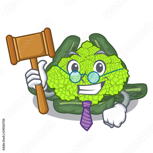 Fényképezés  Judge roman cauliflower isolated on the mascot