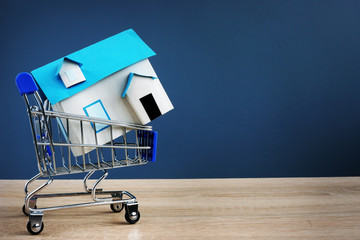 Shopping cart and small house. Buying real estate concept. Free space.