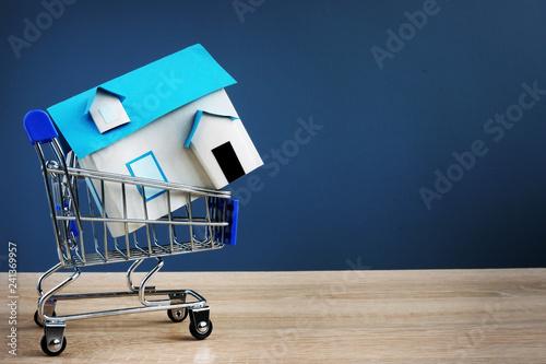 Zdjęcie XXL Wózek na zakupy i mały dom. Kupno koncepcji nieruchomości. Wolna przestrzeń.