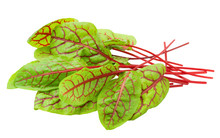 Red Veined Sorrel Leaves On Wh...