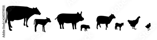 Vector farm animals silhouettes isolated on white background Fototapete