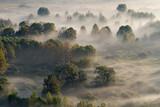 Jesienna panorama na lesie z mgłą, Włochy - 241380768