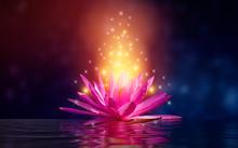 Lotus Pink Light Purple Floating Light Sparkle Purple Background