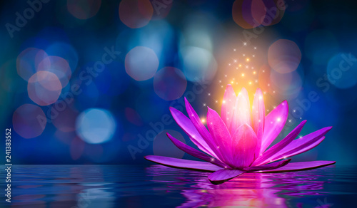 Photo lotus Pink light purple floating light sparkle purple background