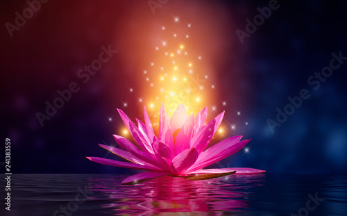 Fotobehang Lotusbloem lotus Pink light purple floating light sparkle purple background