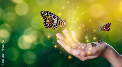 Fotografia Butterflies are in the hands of girls with glittering lights sweet encounter bet