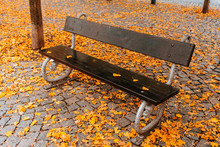 A Bench On Autumn Season With Colorful Leaves Around