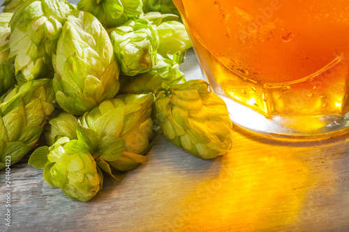 Fresh draft beer with hops.