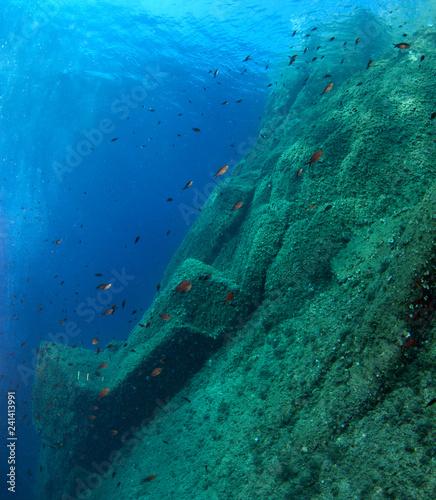 Obraz na dibondzie (fotoboard) Podwodna sceneria. Morze Śródziemne.
