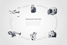 Traveling With Pets - Dog In Bag, Carrier, Veterinary Kit, Pets Ticket And Toys Vector Concept Set