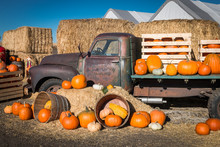 Pumpkin Truck