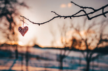 Wooden Handmade Heart In Winter Nature Wit Colorful Pleasure Colors Of Sunset Light - Valentine Love Wallpaper With Space For Your Montage