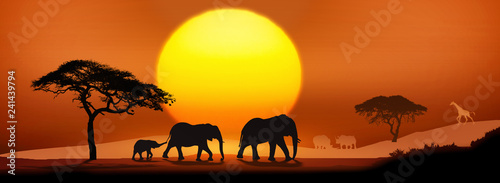 Photo Wild animals silhouette; family of elephants, with giraffes and rhinos