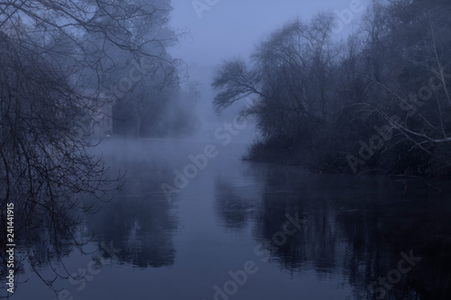 Fototapeta Foggy forest river at night obraz