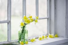 Spring Flowers On Windowsill