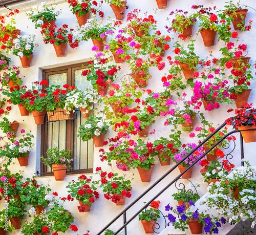 Photo Nice patio with flowers in Cordoba, Spain