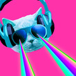 canvas print picture Party dj Cat with rainbow lasers from eyes. Minimal collage clubbing art