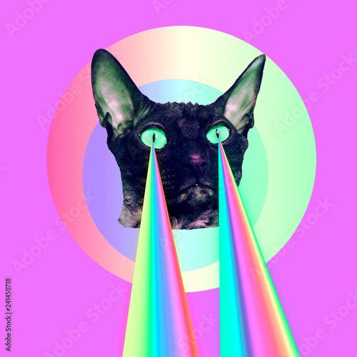 canvas print motiv - Porechenskaya : Fashion cat with rainbow lasers from eyes. Minimal collage funny art