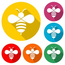 Bumble Bee Icon Or Logo, Color Set With Long Shadow
