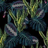 Seamless pattern with tropical monstera palm leaves and exotic plant on a black background.  - 241470398