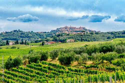 Reichtum der Toskana: Rebenfelder bei Montepulciano