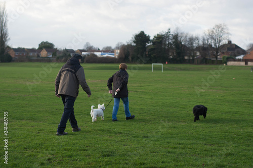 Foto op Aluminium Jacht Corby, United Kingdom - 01 January 2019: Two people walking with dogs. Outside, english town. Copy space.