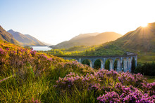 Glenfinnan Viaduct Sunset