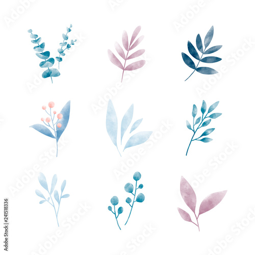 Set of watercolor leaves vectors Wall mural