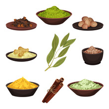 Flat Vector Set Of Various Natural Spices. Aromatic Seasonings For Food. Cooking Ingredients. Culinary Theme