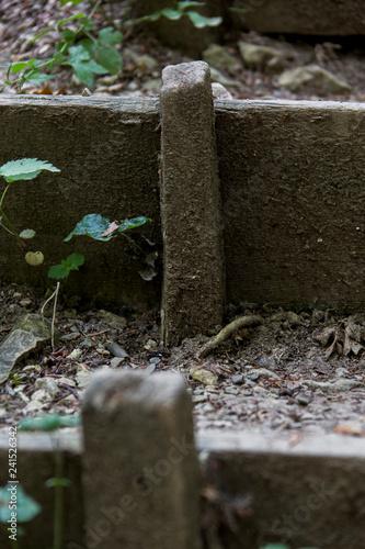 Cadres-photo bureau Jardin Treppenstufe im Wald