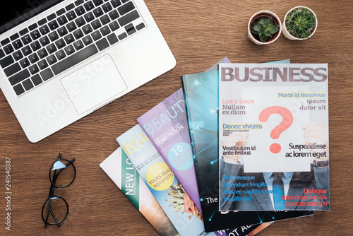 Fotografie, Obraz  top view of laptop, business magazines, potted plants and glasses on wooden tabl