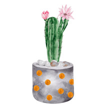 Watercolor Illustration With Green Cactus And Flower In A Flower Pot