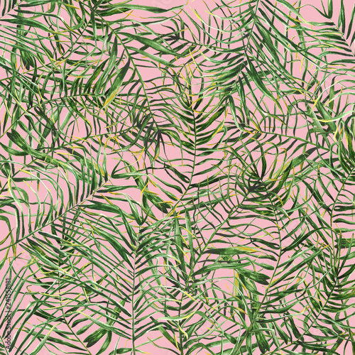 Recess Fitting Tropical leaves Tropical palm leaves background.Hand drawn illustration