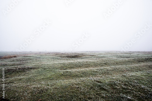 Fotobehang Khaki Winter landscape. Misty morning field, frost and snow on the grass. Latvia