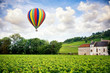 Burgundy. Hot air balloon over the vineyards of the burgundy. France