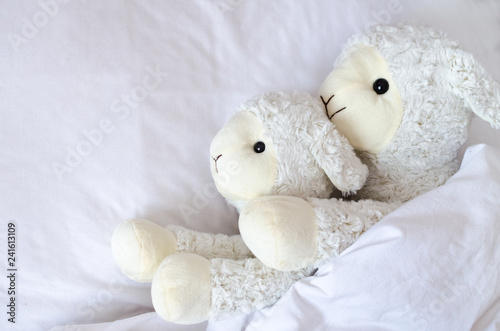 Foto op Canvas Schapen Two sheep lying in the bed