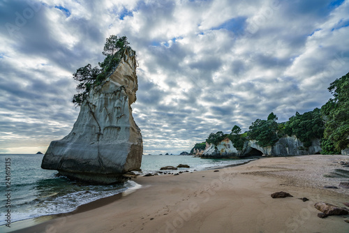 Foto op Canvas Cathedral Cove sandstone rock monolith,cathedral cove,coromandel,new zealand 11