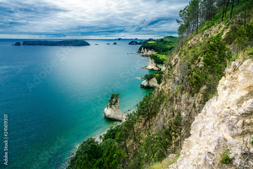 Foto op Canvas Cathedral Cove panorama of coastline of the cathedral cove,coromandel,new zealand 1