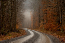 Foggy Morning Dirt Road In Mountains