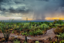 Arizona Desert Monsoon Storm W...