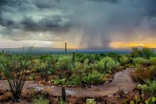 Arizona Desert Monsoon Storm With Dramatic Skies At Sunset