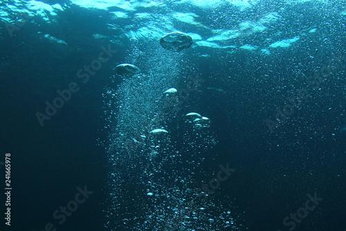 Carta da parati Bubbles in ocean